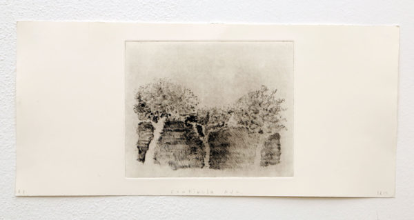 "Lucas Reiner Title: Centinela Ave Medium: Drypoint etching Date of work: 2015 Size: 18"" H x 22"" W (framed) Signed verso and framed Retail value: $400 Winning Bid: $200.00"